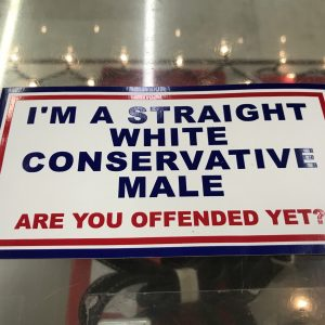 I'm A Straight White Conserative Male Bumper Sticker