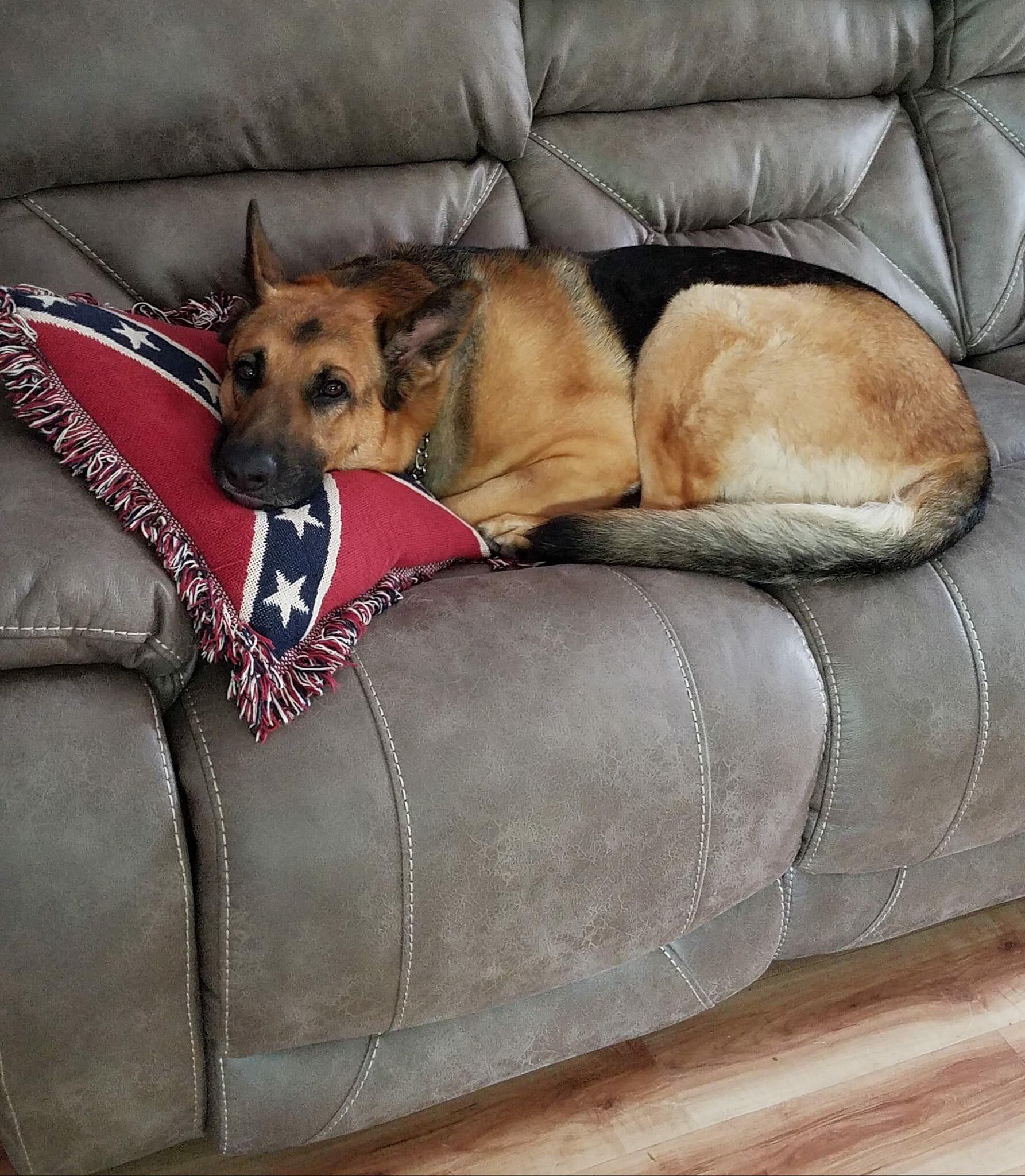 Rebel Fringed Throw Pillow